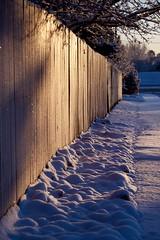 Cold Sunrise 03 (The Good Brat) Tags: colorado us winter cold snow blue cool line street sidewalk fence neighborhood morning sunrise