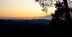 Elbsandsteingebirge (michaelschneider17) Tags: natur deutschland elbsandsteingebirge sachsen sonnenuntergang reisen
