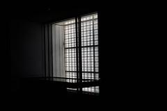 Le Louvre... par windows (Pi-F) Tags: lelouvre abudhabi musée lumière fenêtre carré grillage éclairage ombre reflet