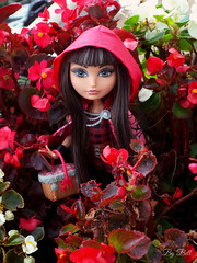 Red Hood (♪Bell♫) Tags: ever after high cerise hood red riding