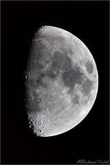 Moon of the day (bertrand kulik) Tags: moon lune ciel sky astronomie nuit night