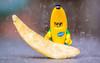 09/52 - Community (Reiterlied) Tags: 105mm banana cmf d5200 dslr germany hamburg lego legography lens macro minifig minifigure nikon photography prime reiterlied sipgoeshamburg2016 sigma stuckinplastic suit toy