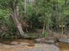 P1240341.jpg (vickydoc) Tags: lingas rivièrekbalspean cascade siemreap rivièreauxmillelingas cambodia angkor cambodge vishnou banteaysrei siemreapprovince kh