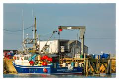 SAKONNET LOBSTER II (Timothy Valentine) Tags: 2018 0118 fishing lobster large pier clichésaturday boat littlecompton rhodeisland unitedstates us