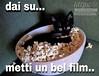 #link #divertenti #cat #popcorn #film #Tiziana #Mosso #Tizi #aforisma #citazioni #frasi https://www.facebook.com/MossoTiziana/ #page #facebook (tizianamosso) Tags: divertenti tiziana link citazioni frasi popcorn film facebook mosso tizi page cat aforisma