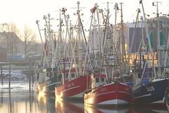2018-02-18_11-55-01 (EG0612) Tags: husum nordfriesland nordsee northsea hafen schiffe