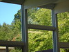 DSC01192 (classroomcamera) Tags: school classroom window windows squares square rectangle rectangles clear day daytime trees outside inside panels panel glass wood wooden ceiling wall view see through transparent