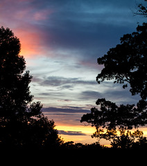 jdy196XX20160714a8652.jpg (rachelgreenbelt) Tags: ouryard americas usa ghigreenbelthomesinc greenbelt maryland northamerica midatlanticregion