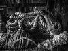 Needs a good whipping (C@mera M@n) Tags: blackandwhite monochrome mystic places rope tools