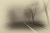 Foggy drive 17 (Jerzy Durczak) Tags: car fog road driving