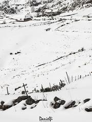 Paint it white (danielfi) Tags: peral somiedo asturias asturies paisaje landscape nieve snow invierno winter ngc naturaleza nature
