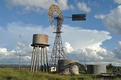 20 foot IBC Self Oiling windmill; Coalbank, Queensland, Australia (sarracenia.flava) Tags: ibc simplex windmill queensland australia intercolonialboringcompany self oiling coalbank