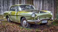 TLC Req'd (Paul Rioux) Tags: automobile auto car vehicle transportation old vintage classic restoreable decay decayed decaying moss green weathered renault caravelle outdoors fence leaves tree prioux project ignored forgotten