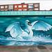 Riverside Swan