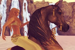 Arabian (SunTvilling) Tags: secondlife truthhair jinx waterhorse bento lelutka simone maitreya zaara the painted pony