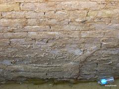 Western Wall lower Ishtar Gate, Babylon (16).jpg (tobeytravels) Tags: iraq babylon babel mesopotamia akkadian amorite hammurabi assyrian neobabylonian hanginggardens achaemenid seleucid parthian roman sassanid alexanderthegreat nebuchadnezzar sargon chaldean hittites sennacherib xerxes