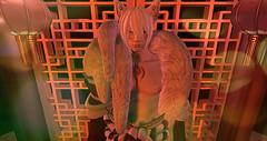 First Sight. (OhLookItsRey) Tags: cerberusxing dynasty mk twc air su ayashi