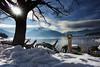 Icy Lake Chuzenjiko, Nikko, Japan (El-Branden Brazil) Tags: nikko chuzenjiko lakechuzenjiko japan japanese mountains ice snow swanboats
