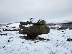 180206_144240_P2060167 - Version 2 (campathmike) Tags: silurianrocks erratics glacialdeposits norbererratics geology