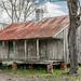 Laurel Valley Plantation -6009