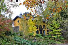 San Sebastian, Spain (dw*c) Tags: spain sansebastian europe espanol espana nikon picmonkey travel trip tree garden gardens