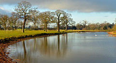 WINTER  REFLECTIONS (chris .p) Tags: nikon d610 view reflection reflections nt worcestershire england winter 2017 nationaltrust december uk croome landscape