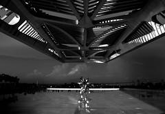 Museu do amanhã e Puff star (tianlopez) Tags: arquitectura museo museu m museum arte art arquitecture blackandwhite bw sombras mar puente tarde cultura riodejaneiro rio janeiro centro