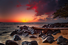 Hawaii_20100526_234 (3) (Shannon Cayze) Tags: beach canon5dmarkii canonef2470mmf28lusm hanaleibay hawaii kauai ocean rocks sand shannoncayze stregis sunset tree water princeville unitedstates us