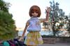 12 (Welt Der Puppen) Tags: dd dollfie dream dynamite dddy blythe blythes azone doll dolls collector anime leone akame ga kill pure neemo