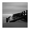 008/100x Square format (neals pics) Tags: 100xthe2018edition 100x2018 image8100 beach coast coastal sea ocean water sand wood groyne defences longexposure aberdeen winter mono monochrome blackandwhite bw