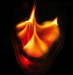 heartburn for 'Flame' Macro Mondays (pics by paula) Tags: flame flames burnt burning hot heart string macro heartburn macromondays monday macros up macromonday heat
