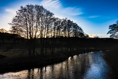 Back light (Phil-Gregory) Tags: nikon d7200 tokina higgertor hathersage 1120mm 1120mmf2811 1120mmproatx11 naturalphotograph naturephotography natural countryside colours colour scenicsnotjustlandscapes landscapes trees light sunset river water clouds sky