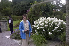 Adele by a Beautiful bush in the botanical gardens of Visby Gotland Sweden. (bellrich1941) Tags: visby gotland sweden