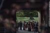 greg_rosie_wed_hi_573 (cambo_estate) Tags: camboestate fife kingsbarns scotlandwedding wedding weddingphotography fifeweddingphotography gregrosie scotland uk