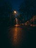 A street in the morning in winter and there isn't any snow. But it's still beautiful. (Norbert Szucs) Tags: photography mobilephotography honor8 street streetlight light dark night lamp lamppost road reflection edit lightroom photoshop pmpresets2017 nightlight photoseries walk rain rainy wet winter nosnow morning tree