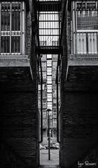 vallekeando2018-38 (profesorxproyect) Tags: nikon d7100 50mm bw byn blackandwhite blancoynegro bn callejera spain madrid streetphotography street ciudad city vallecas
