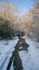 retouche-1000887 (Jeffray12) Tags: cascadesduherisson foret forêt bois neige riviere herisson