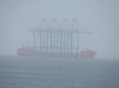 Cranes arrive in winter conditions to Port of Tacoma (Liz Satter) Tags: tacoma portoftacoma cranes panamex cargoship coolcargo cargo commencementbay pugetsound snow fog piercecounty southsound wa pnw pacificnorthwest northwest internationaltrade port253 northwestseaportalliance nwsacranes