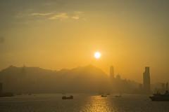 DSC03690 (africaninasia) Tags: kaitak kowloon hongkong zeiss sony sonya7ii thedarkside hk zeisslens