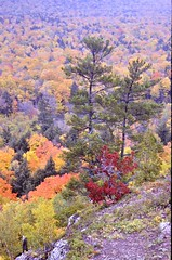 Porcupine Mountains State Park, Michigan (Laurette Victoria) Tags: autumn trees fallcolor michigan upperpeninsula porcupinemountains