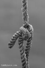 Mono Rope (1968photo) Tags: rope thread rep binding knot closeup marine knut naval line