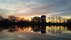 sin filtro (abigui.b8834) Tags: sinfiltro hermosura 9dejulio agua plantas atardecee arboles paisaje paisajes colores cielo