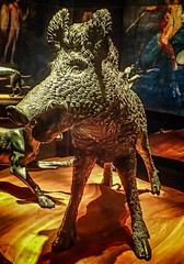Detail of Boar attacked by two dogs from the peristyle garden of the House of the Citharist Pompeii 1st century CE (2) (mharrsch) Tags: sculpture bronze boar dog hound hunting roman pompeii 1stcenturyce ancient omsi portland oregon mharrsch