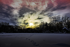 beautiful winter ... (mariola aga) Tags: naturesanctuary winter park pond trees water snow frozen sky sun sunset clouds nature silhouette dusk evening art saariysqualitypictures thegalaxy