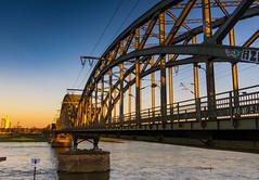 South Bridge Cologne (Ulrich-K) Tags: cologne köln bridge brücke viaduct viadukt railwaybridge rail eisenbahnbrücke rhein rhine river flus goldenhour goldenestunde