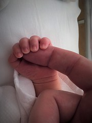 Yuuki (Mongwau) Tags: baby newborn tiny small hand
