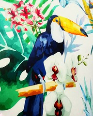 I'm like Toucan Sam when I follow my nose #Toucan #toekan #bird #birds #vogel #vogels #wallart #art #artwork #lovephotography #photography #photographer #fotograaf #fotografie #inside (Chantal vander Reijden) Tags: art vogel wallart artwork birds inside lovephotography fotografie toekan fotograaf vogels bird photographer photography toucan
