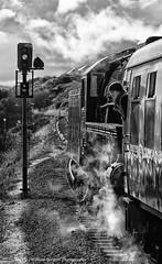 Window Hanger (Better Living Through Chemistry37) Tags: s160 5197 steam steamlocomotives goodrington goodringtonsands railways dartmouthrailway