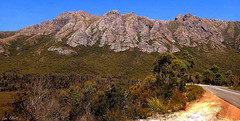 THE RUGGED SOUTH WEST (Lani Elliott) Tags: nature naturephotography landscape scene view scenic mountain mountainrange trees bluesky sky bush road scenictasmania southwesttasmania fantastic beautiful awesome excellent