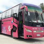 1st Class Deluxe Bus of Mega Bus Lines thumbnail